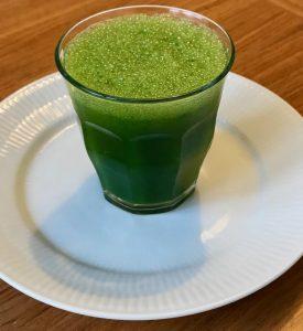 Japansk juice kursus for begyndere